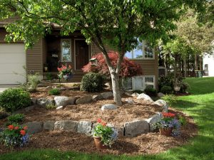 Fall landscaping tips for spring bulbs